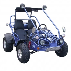 Buggy Off Road Go Karts en venta