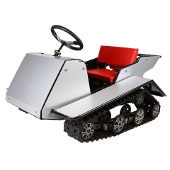 China Kids Snowmobile Manufacture 200cc Camouflage